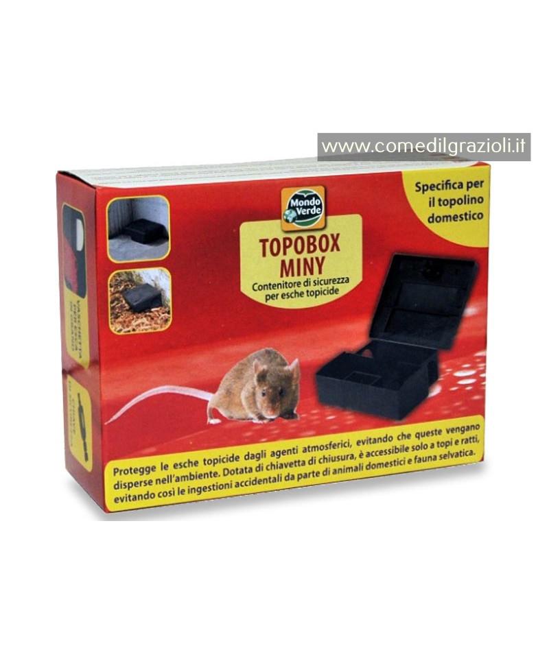 TRAPPOLE BOX PER ESCA TOPI...